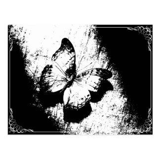 Carte Postale Papillon noir et blanc