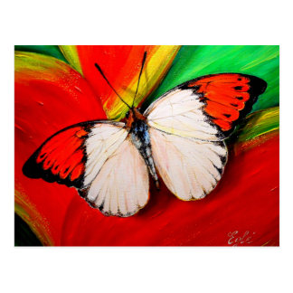 Carte Postale Papillon orange de bout