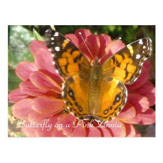 Carte Postale Papillon sur un Zinnia rose