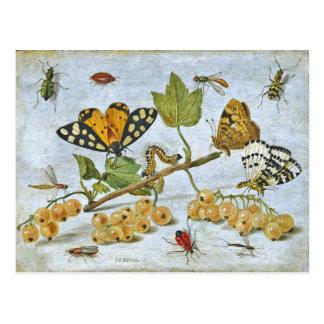 Carte Postale Papillons, chenille et fruits
