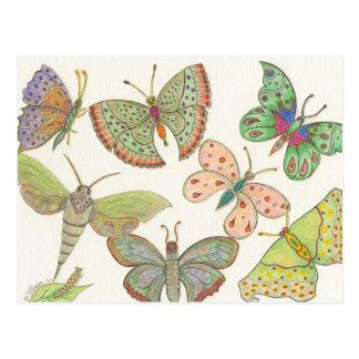 Carte Postale Papillons de la série #4 de hub de survivants