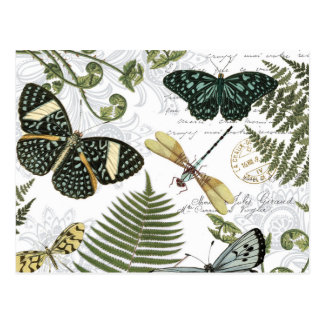 Carte Postale papillons et libellules vintages modernes