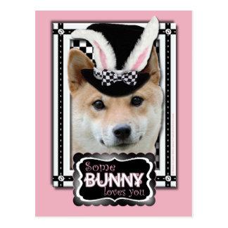 Carte Postale Pâques - un certain lapin vous aime - Shiba Inu