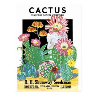 Carte Postale Paquet de graine de cactus