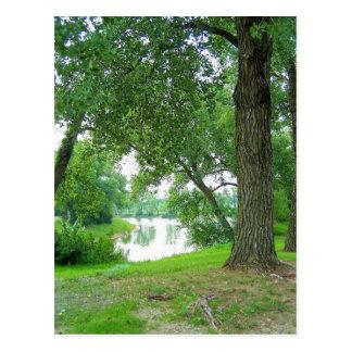 Carte Postale par les arbres