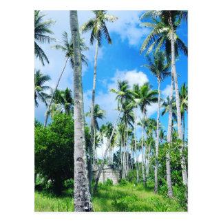 Carte Postale Paradis dans le Pacifique