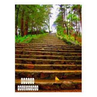 Carte Postale Parc de Wright à Baguio