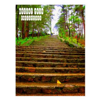 Carte Postale Parc de Wright de Baguio