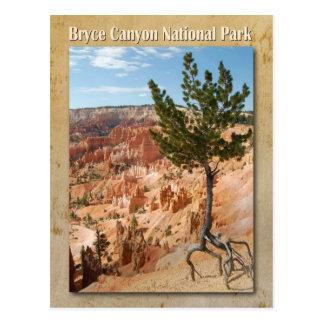 Carte Postale Parc national de canyon de Bryce, Utah