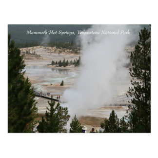 Carte Postale Parc national de Mammoth Hot Springs, Yellowstone