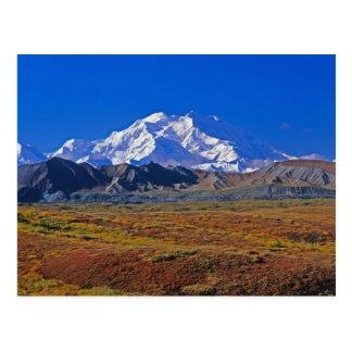 Carte Postale Parc national du mont McKinley Denali, Alaska