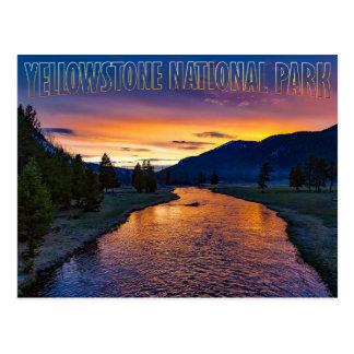 Carte Postale Parc national Wyoming de Yellowstone au courant de