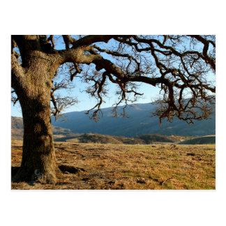 Carte Postale Parc régional de Del Valle, Livermore, CA