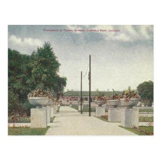 Carte Postale Parc vintage Chicago l'Illinois de Garfield