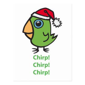 Carte Postale Parrotlet dans le casquette de Père Noël