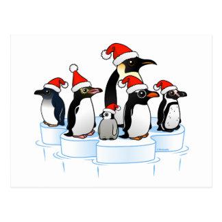 Carte Postale Partie de pingouin de Noël