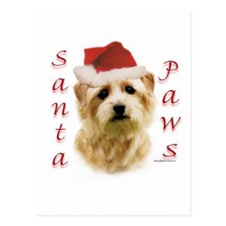 Carte Postale Pattes de Norfolk Terrier Père Noël