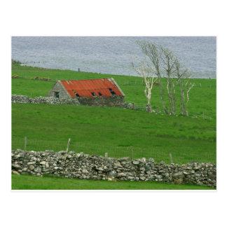Carte Postale Pâturage atlantique de côte, Irlande