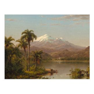 Carte Postale Paumes de Tamaca le long de la rivière de