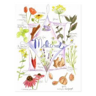Carte Postale Pavot médicinal d'ail d'echinacée d'herbe