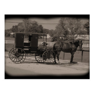 Carte Postale Pays amish Sugarcreek, Ohio
