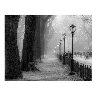 Carte Postale Paysage noir et blanc dans le Central Park