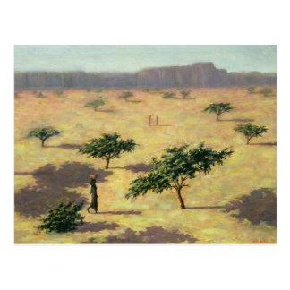 Carte Postale Paysage sahélien Mali 1991