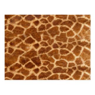 Carte Postale Peau de girafe