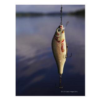 Carte Postale pêche de l'attrait devant l'eau