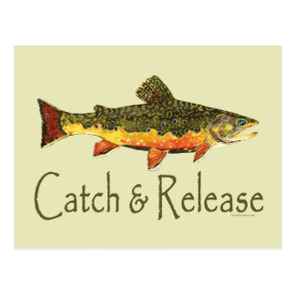 Carte Postale Pêche de truite de crochet et de libération