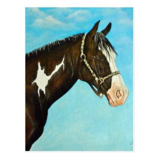 Carte Postale Peignez le cheval