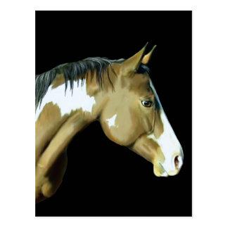 Carte Postale Peignez le cheval, Madame