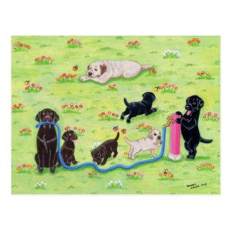 Carte Postale Peinture de Labradors d'amusement de ressort