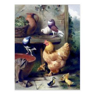 Carte Postale Peinture de pigeons de canetons de poule d'oiseaux