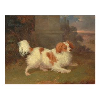 Carte Postale Peinture vintage d'épagneul du Roi Charles de