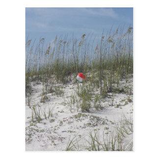 Carte Postale Perdu dans les dunes