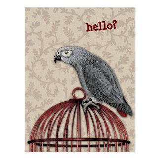 Carte Postale Perroquet de gris africain sur la cage à oiseaux