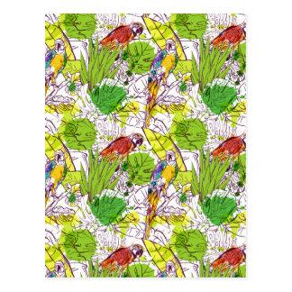Carte Postale Perroquets tropicaux