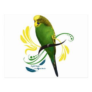 Carte Postale Perruche anglaise verte