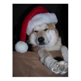 Carte Postale Peu d'aide de Shiba-Inu de Père Noël