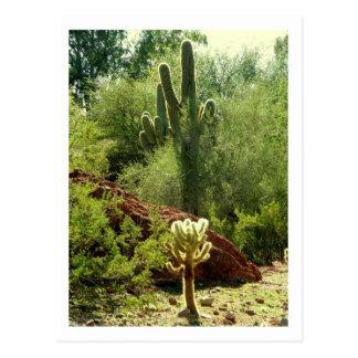 Carte Postale Phoenix Flora