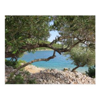 Carte Postale Photo de côte de la mer Méditerranée