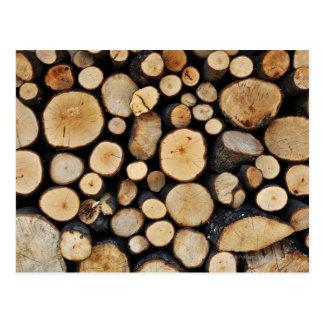 Carte Postale Pile de rondins d'arbre