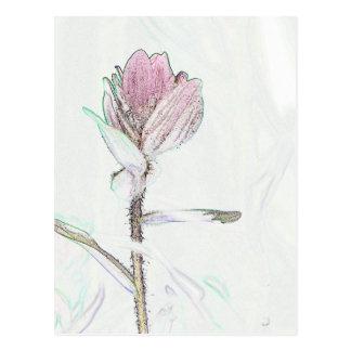 Carte Postale Pinceau