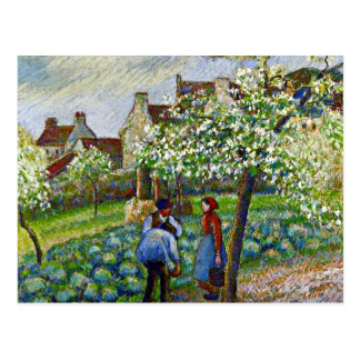 Carte Postale Pissarro - pruniers fleurissants