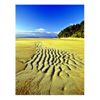 Carte Postale Plage à marée basse, parc national d'Abel Tasman