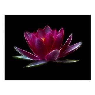 Carte Postale Plante aquatique de fleur de Lotus