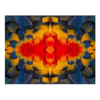 Carte Postale Plume d'ara d'écarlate de kaléidoscope