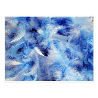 Carte Postale Plumes bleues