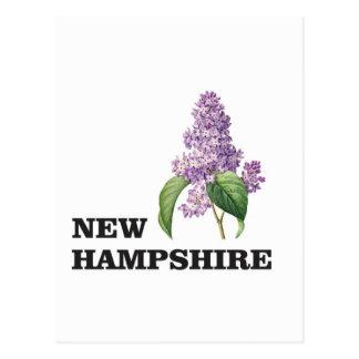 Carte Postale plus du New Hampshire